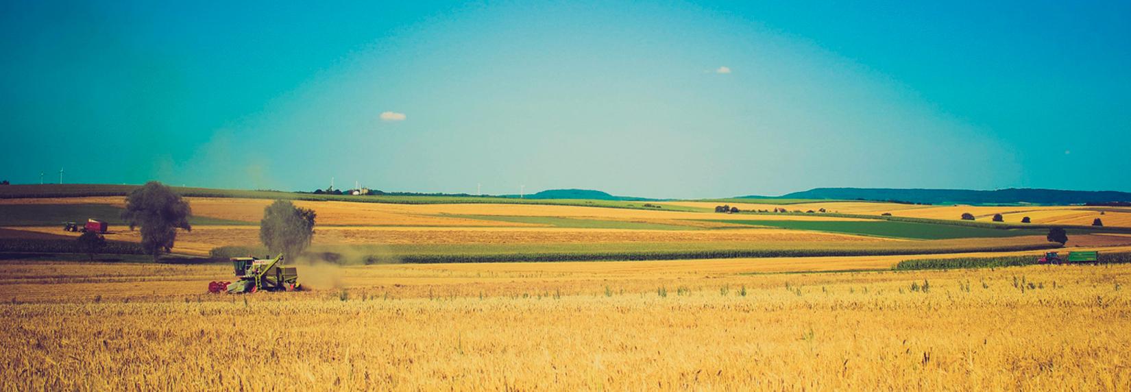 Anerkannter Fachbetrieb für Grundstücksentwässerung